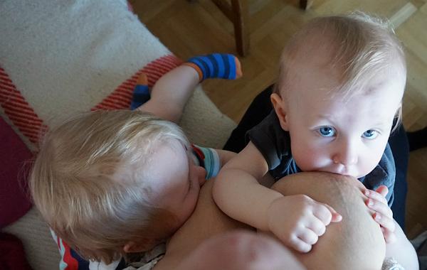 Tandemamning. Treåring och ettåring ammar samtidigt. Ettåring tittar uppåt, in i kameran.