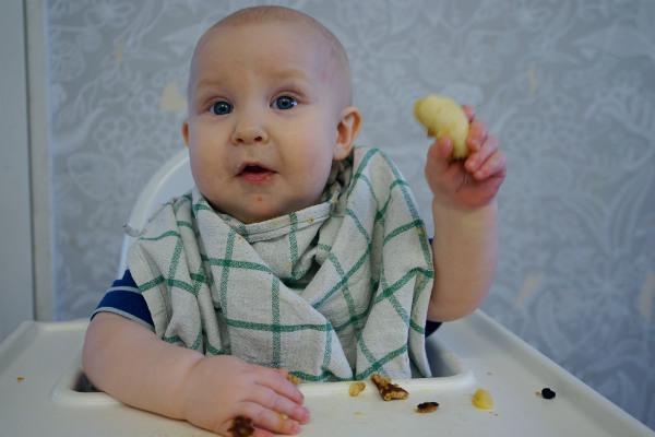 Matintroduktion, BLW. Bebis äter en bit banan, sitter i matstol i kök.