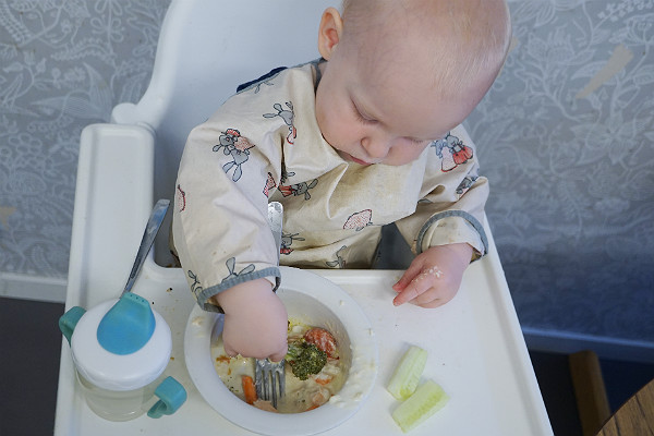 Matintroduktion. Bebis äter mat, med förkläde och i matstol i kök.